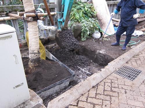 根元周りの土壌改良(101023) 004.jpg
